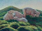 Sweet Sheep Linda Sorensen Thumbnail